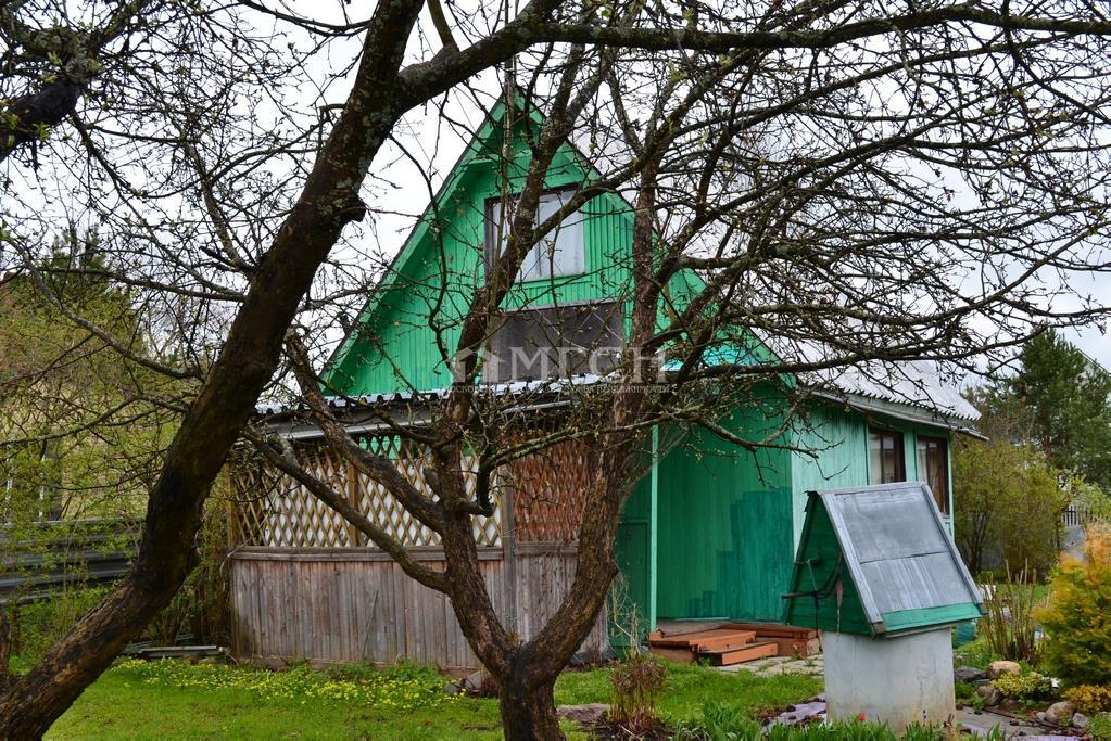 фото участок - Московская область обл., Рузский городской округ р-н., Можайское, деревня Грибцово