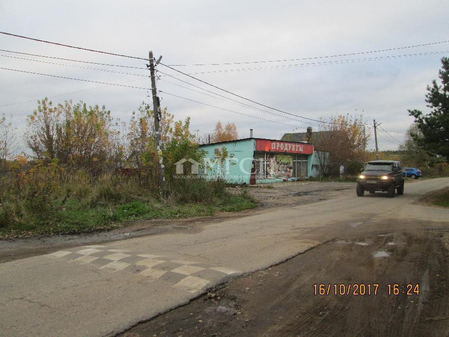 Московская область, Раменский городской округ, деревня Сафоново