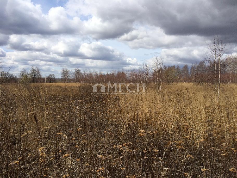 фото участок - Тульская область обл., Ясногорский район р-н., деревня Щепилово