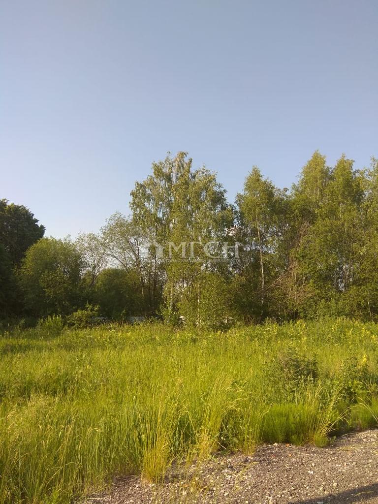 Московская область, Раменский городской округ, коттеджный поселок Софьино-2
