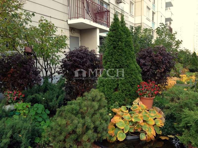 фото 2 ком. квартира - Москва, м. Кузьминки, Окская улица